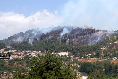 שריפת יער בירייה